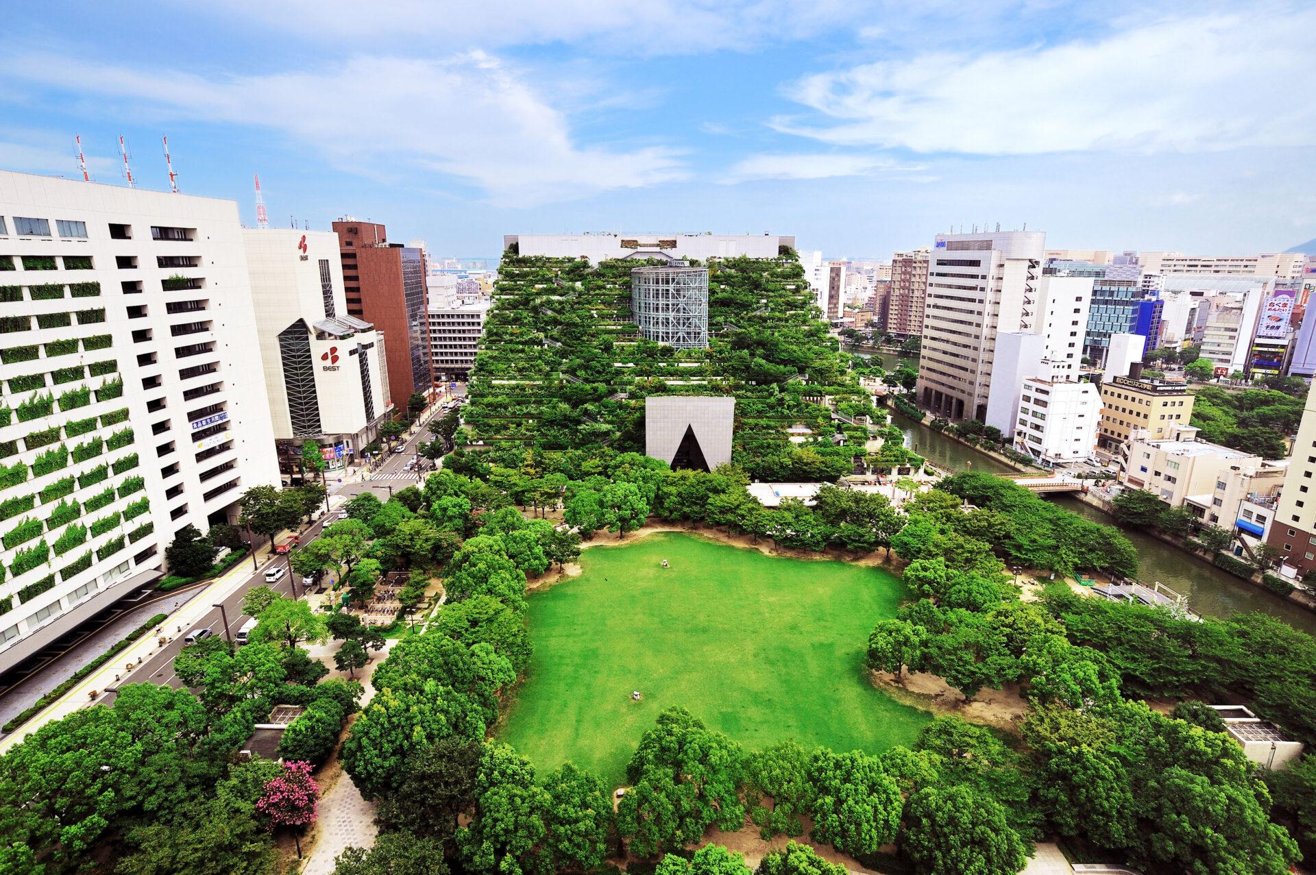 福岡市天神中央公園とアクロス・ステップガーデン